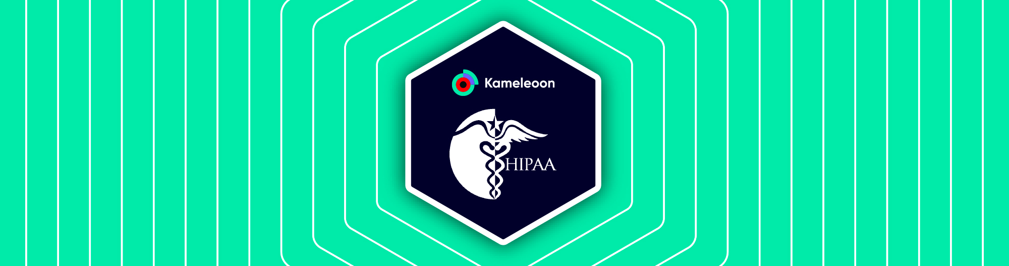 Kameleoon HIPAA compliance